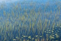 Lake Marsijärvi